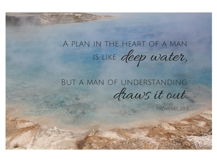 a-plan-in-the-heart-of-a-man-is-like-deep-waterbut-a-man-of-understanding-draws-it-out-prov-20_5